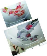 Натяжні стелі Luxe Design Ціни нижче . Телефонуйте і замовляйте.