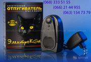 Мыши под пластиком и гипсокартоном – Электрокот защитит