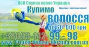 Куплю-Продати волосся Чернівці Скупівля волоссся Україна