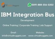 IBM Integration Bus Development Trainingb