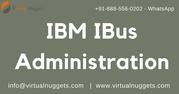 IBM IBUS Administration Online Training